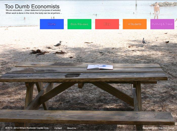 Too Dumb Economists website design