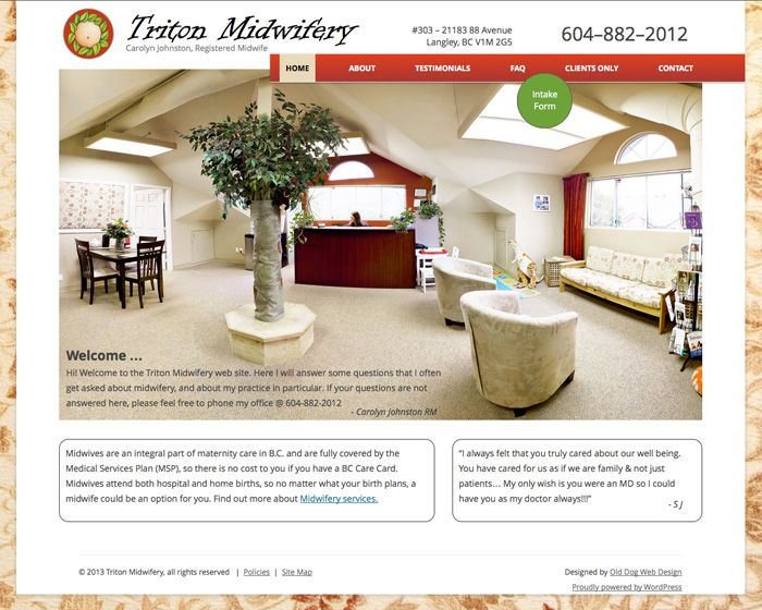 Triton Midwifery website home page